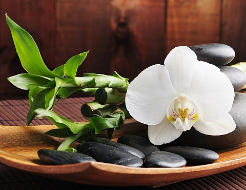prostata massage bochum